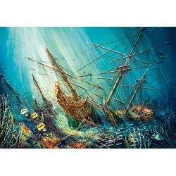 Zakladi oceana (1000 kosov)...