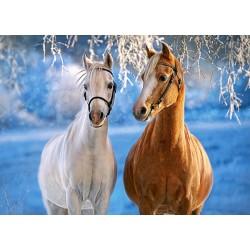 Konja v zimski idili (260...
