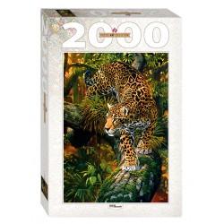 Leopard (2000 kosov) - Step...