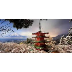 Fuji & Pagoda (3000 kosov)...