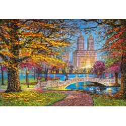 Central Park, New York...