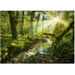 Čarobni gozd (1000 kosov) -...