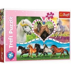 Konji (200 kosov) - Trefl...