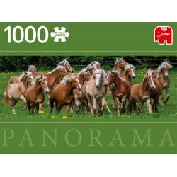 Konji Halfinger (1000...