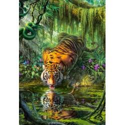 Tiger v džungli (1000...