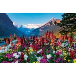 Gorske rože (3000 kosov) -...