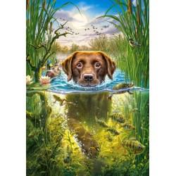 Plavajoči pes (500 kosov) -...