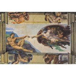 Michelangelo: Stvarjenje...