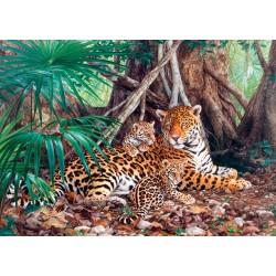 Jaguarji v džungli (3000...