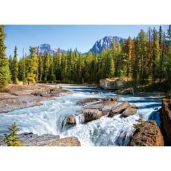 Reka Athabasca, Nacionalni...