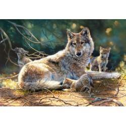 Volkulja z mladiči (1500...
