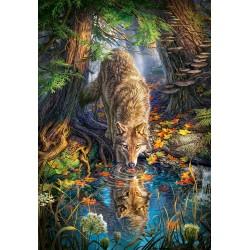 Volk v divjini (1500 kosov)...