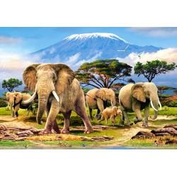 Jutro pod Kilimanjarom...