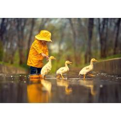 S prijatelji na deževen dan...
