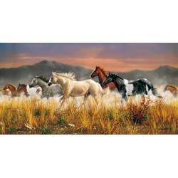 Konji v galopu (13200...