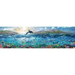 Ocean poln življenja (2000...