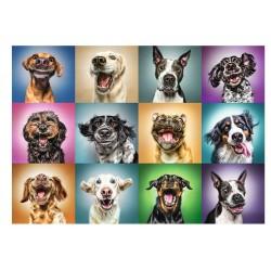 Smešni pasji portreti (1000...