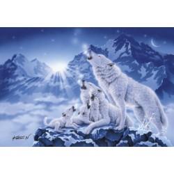 Krdelo volkov (1000 kosov)...