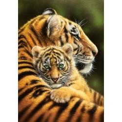 Tigrova ljubezen (500...